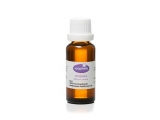 Aniseed 100% Pure Essential Oil