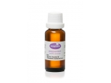 Peppermint 100% Pure Essential Oil